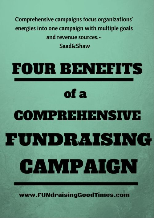 comprehensive fundaraising campaigns,  annual campaign, capital campaign, comprehensive campaign, coordinating fundraising campaigns, fundraising, fundraising campaig, how to grow your fundraising, nonprofit campaigns